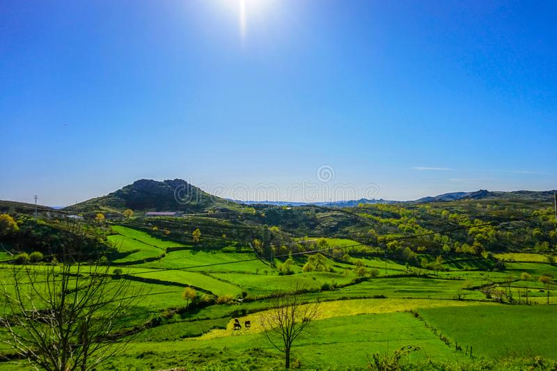 Green landscape in mountains of Alvao, Portugal. Beautiful green open landspace at the mountains in Alvão National Park during day time, Portugal royalty free stock photos