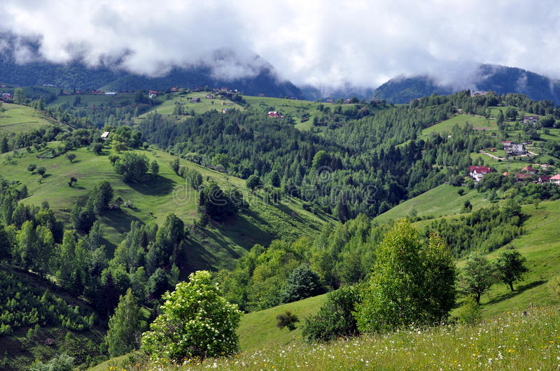 Beautiful green, vibrant mountains. Romania royalty free stock images