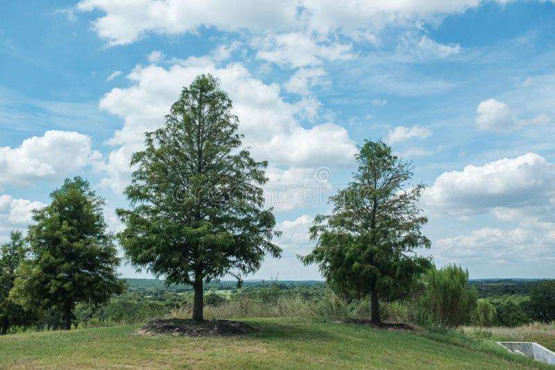 Beautiful greenery in Texas countryside around Lake Tahoe, United States. The beautiful greenery in Texas countryside around Lake Tahoe, United States royalty free stock photo
