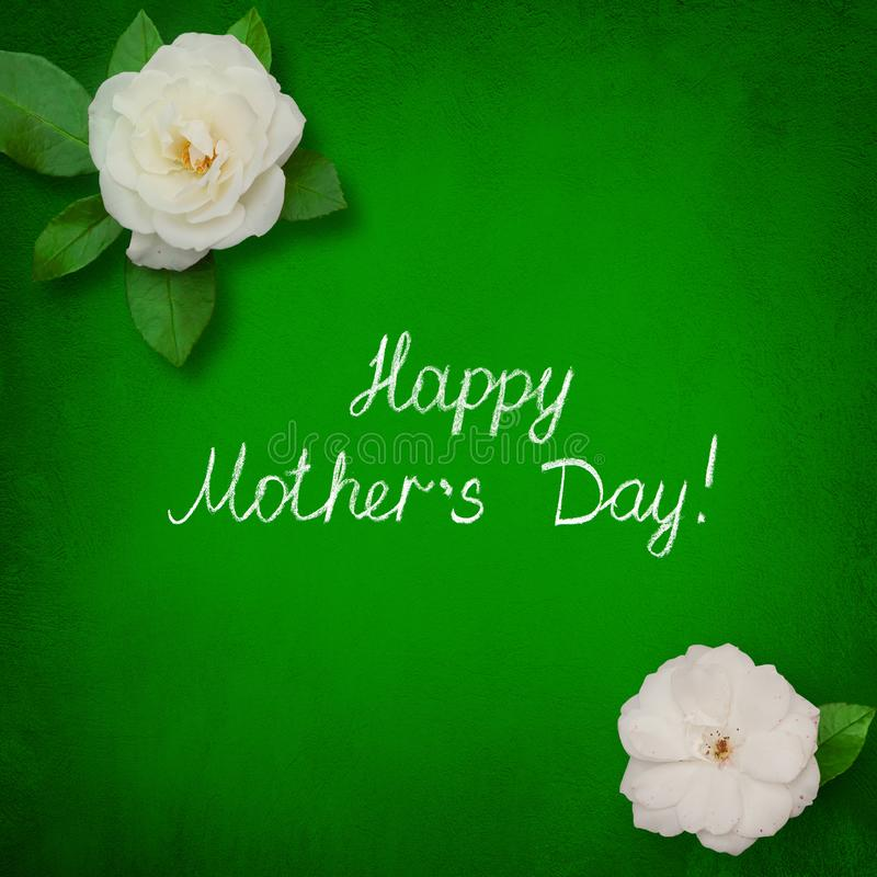 Beautiful greeting card Happy Mothers Day with white rose flowers stock photos