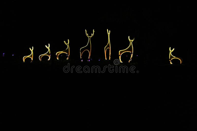 Beautiful group of deer made with light in night between trees royalty free stock photography
