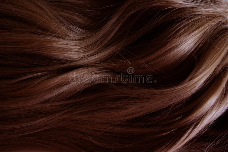 Beautiful hair. Long curly red hair. Staining in dark red. stock photography