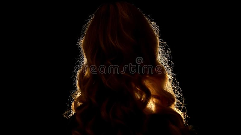 Beautiful hairstyle of blond woman back view, black background, beauty shop stock photography