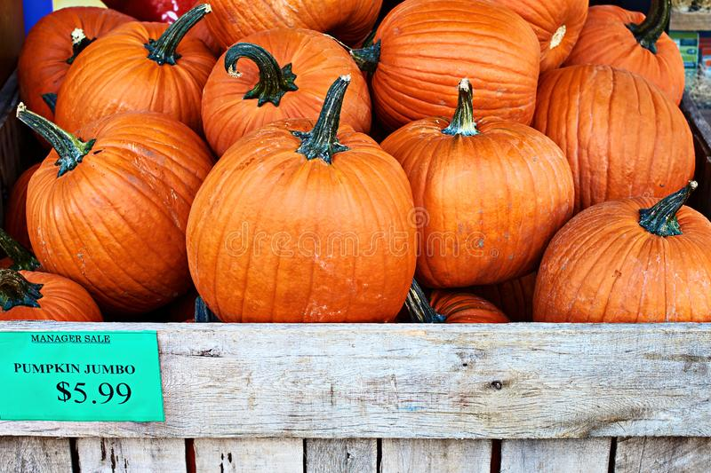 Halloween Hillegom.Jumbo Store Sign Stock Images Download 29 Royalty Free Photos