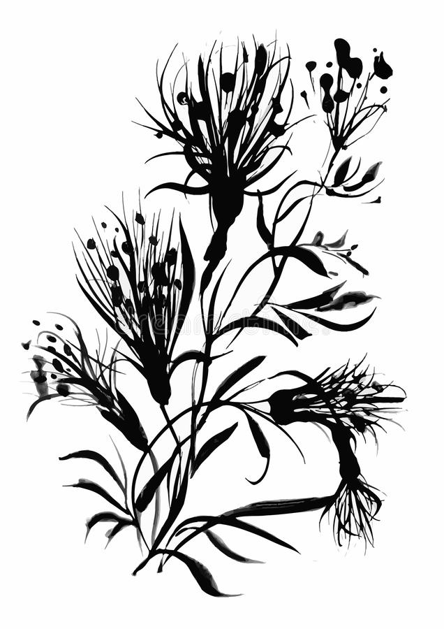 Beautiful hand-drawn monochrome herbs illustration royalty free illustration