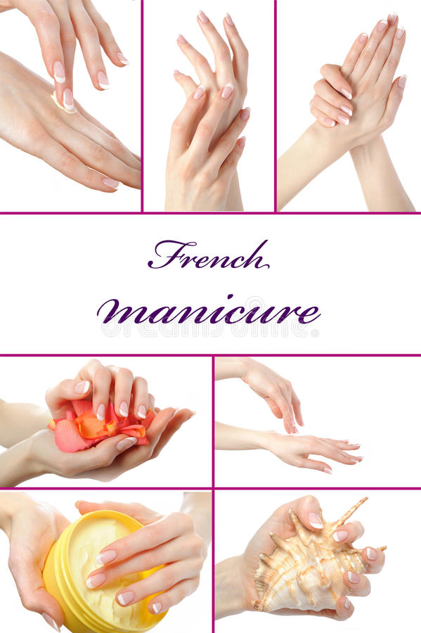 Free Beautiful Hand With Perfect French Manicure Royalty Free Stock Image - 17586926