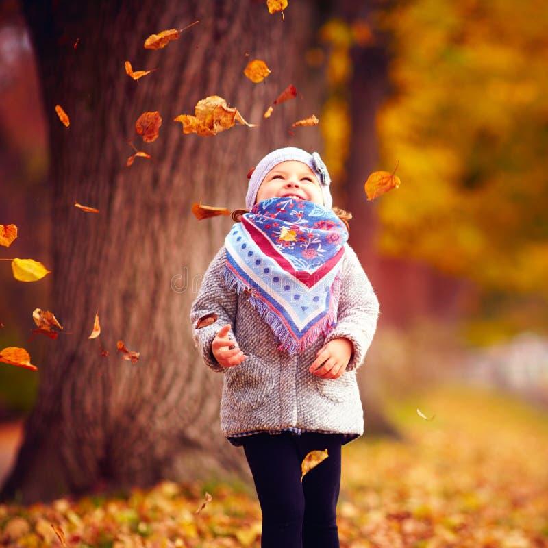 Beautiful happy baby girl having fun in autumn park, among fallen leaves stock image