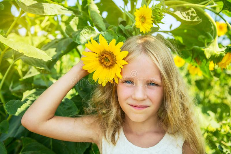 Beautiful happy blonde little girl on sunflower field. Girl holds flower in hand. royalty free stock image