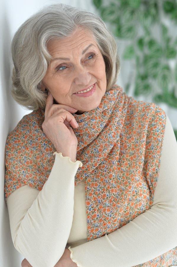 Beautiful happy elderly woman royalty free stock image
