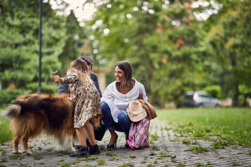 Beautiful happy family is having fun with Rough Collie outdoors royalty free stock images