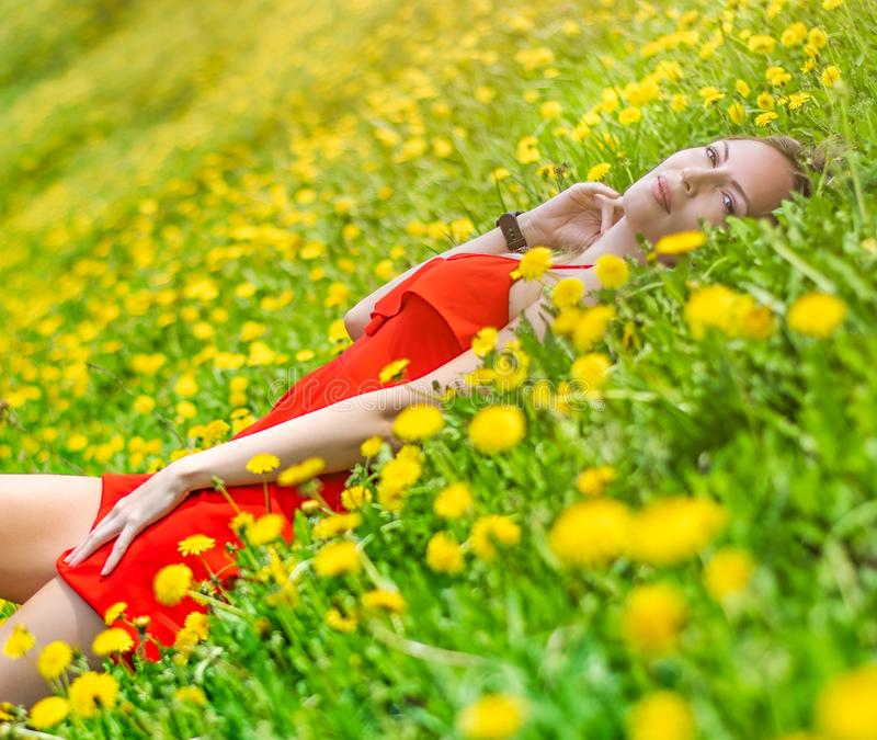 Beautiful slim young female student in a bright red dress cuts in the middle of a green field or meadow in yellow dandelions stock image