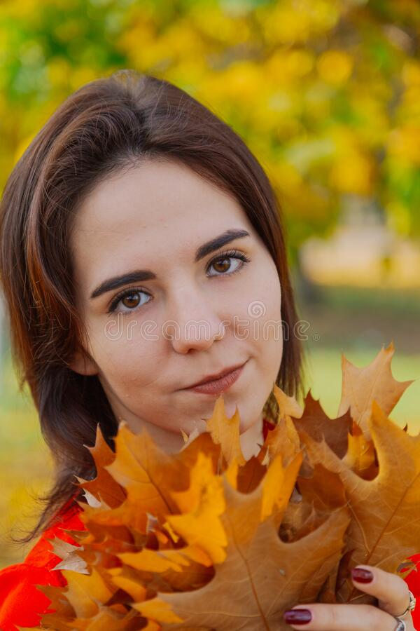 Beautiful happy woman with a bouquet of yellow leaves in autumn. royalty free stock photos