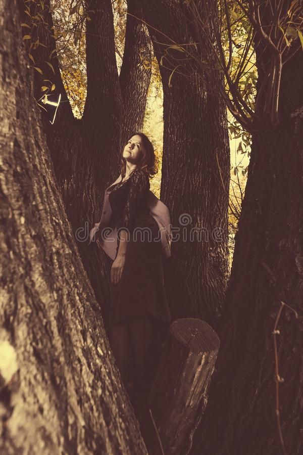 Beautiful happy woman walking in the autumn city park among the trees. there are orange leaves on the branches. Portrait of royalty free stock photos