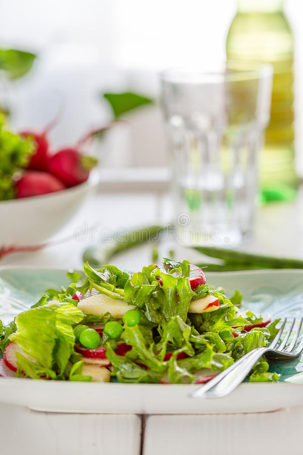 Beautiful Healthy Paleo Green Salad with Green Peas and Radish royalty free stock photography