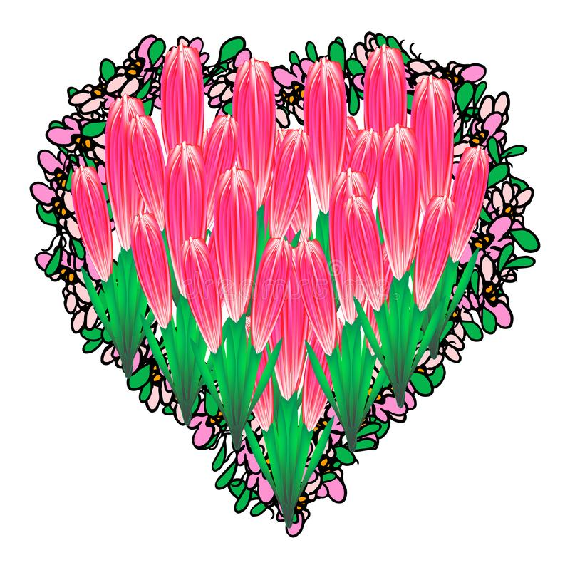 Beautiful heart filled with tulips. Valentines Day. Vector illustration on isolated background. stock illustration