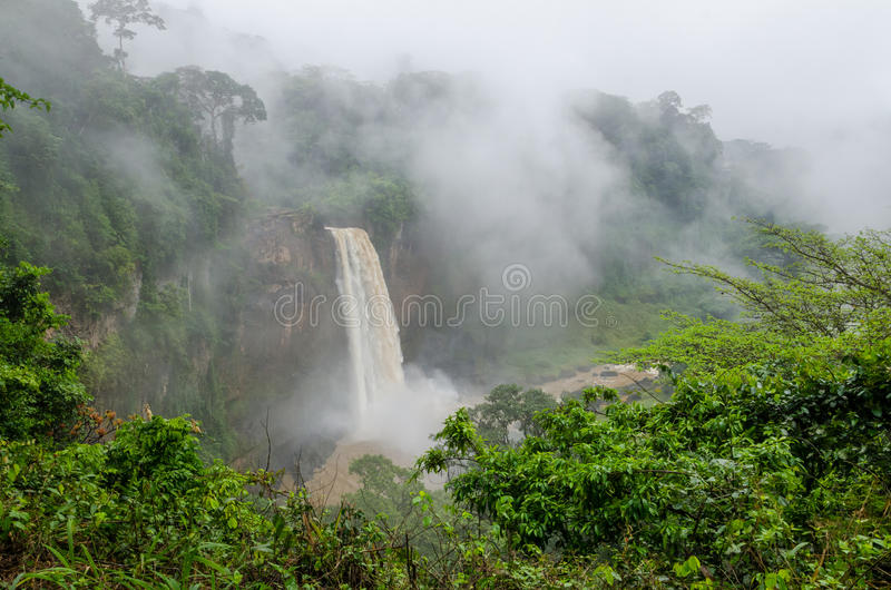 Beautiful hidden Ekom Waterfall deep in the tropical rain forest of Cameroon, Africa.  royalty free stock image