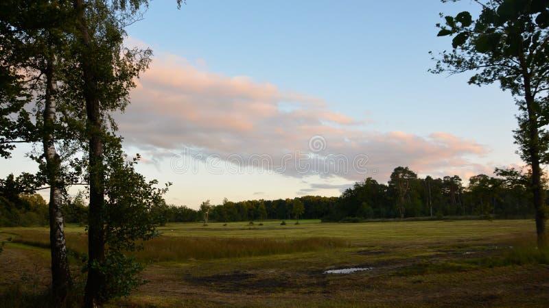 Beautiful and high quality landscape. Beautiful and high quality. landscape royalty free stock photos