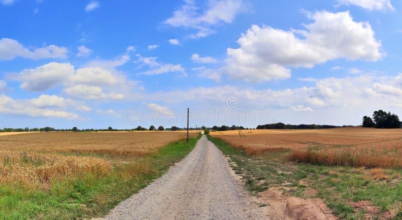 Beautiful high resolution summer landscape with fields, green grass and a stunning summer sky taken in northern germany. Beautiful high resolution summer royalty free stock photos