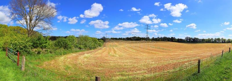 Beautiful high resolution summer landscape with fields, green grass and a stunning summer sky taken in northern germany. Beautiful high resolution summer stock image