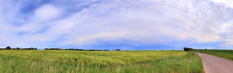 Beautiful high resolution summer landscape with fields, green grass and a stunning summer sky taken in northern germany. Beautiful high resolution summer stock photography