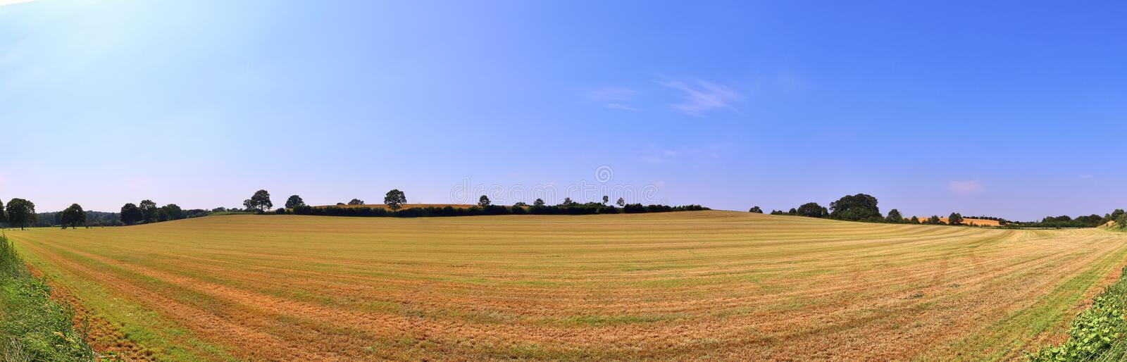 Beautiful high resolution summer landscape with fields, green grass and a stunning summer sky taken in northern germany. Beautiful high resolution summer royalty free stock photography