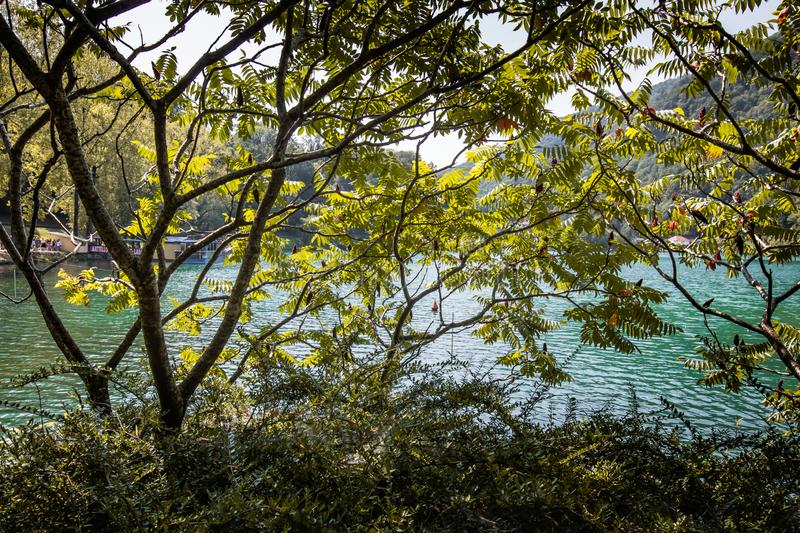 Beautiful hike by river soca in slovenia. Most na soci stock images
