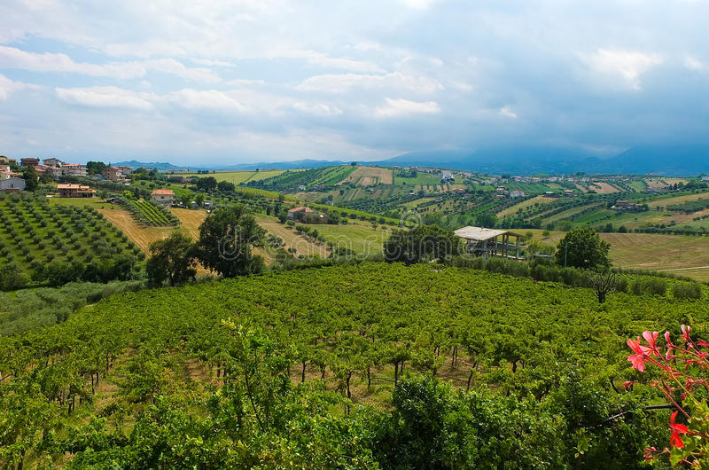 Beautiful hills in the province of Teramo. In Italy royalty free stock photo