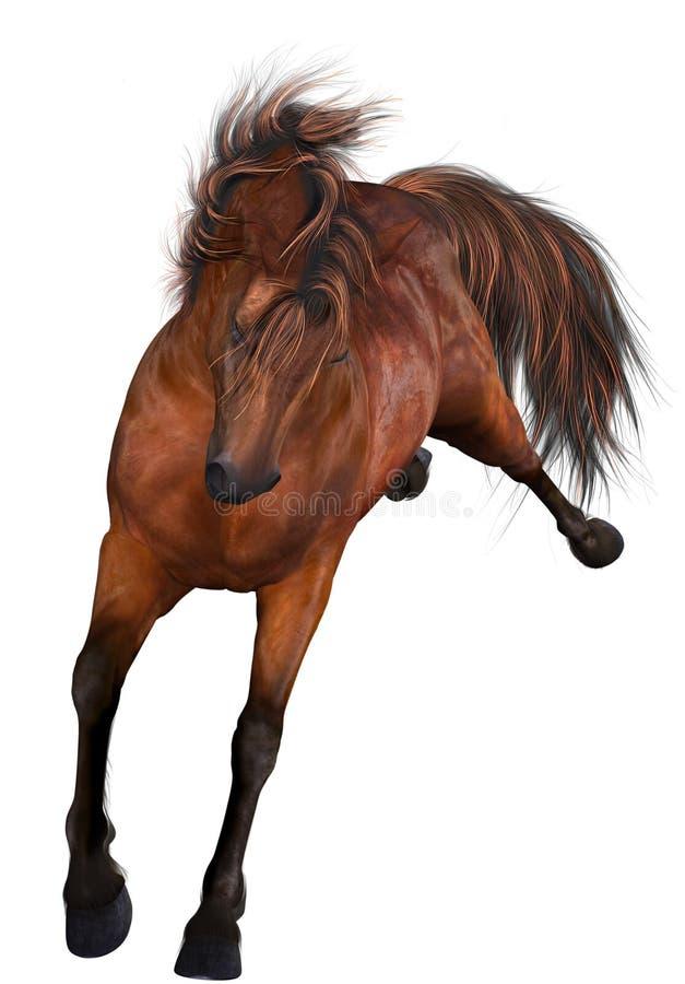 Free Beautiful Horse Stock Photos - 8930463
