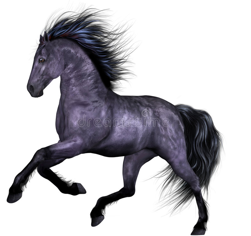 Free Beautiful Horse Royalty Free Stock Images - 8930479