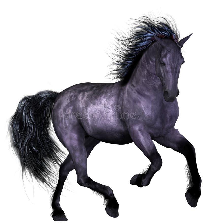 Free Beautiful Horse Royalty Free Stock Photos - 8930488