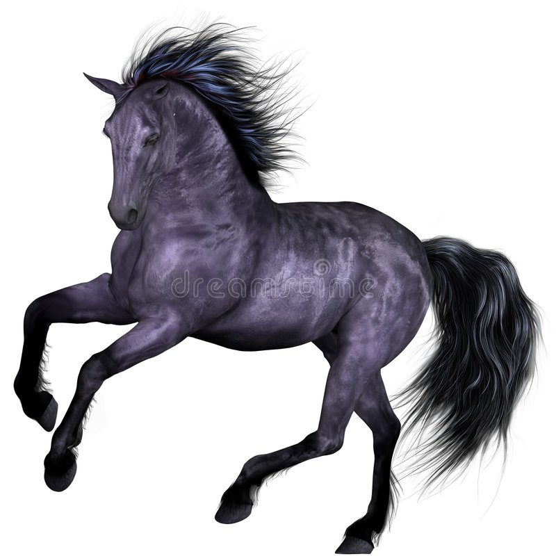 Free Beautiful Horse Royalty Free Stock Photo - 8930505