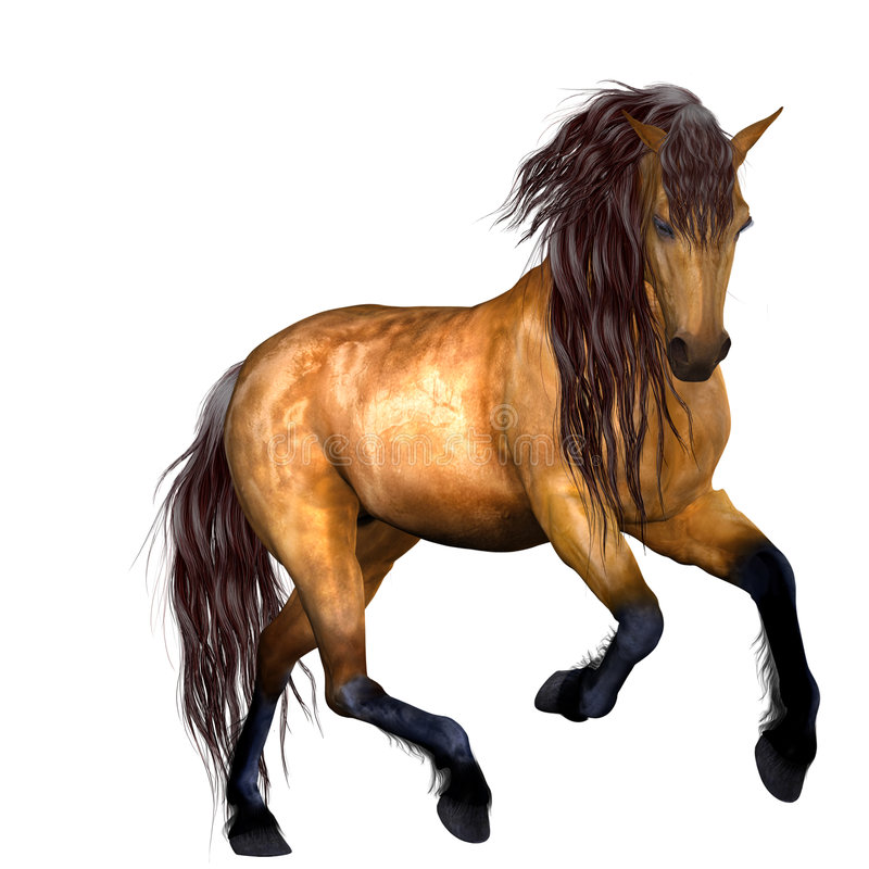 Free Beautiful Horse Royalty Free Stock Photo - 8930525