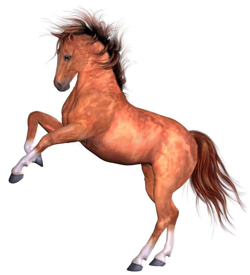 Free Beautiful Horse Royalty Free Stock Photos - 8962138