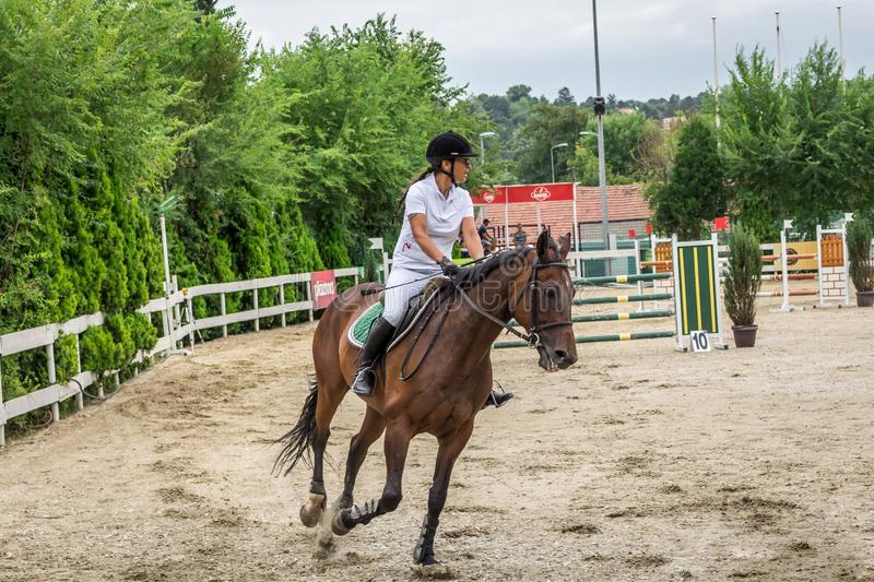 Beautiful horse and jokey in action at horse race track with obstacle equipment at hippodrome. In Belgrade, Serbia stock image