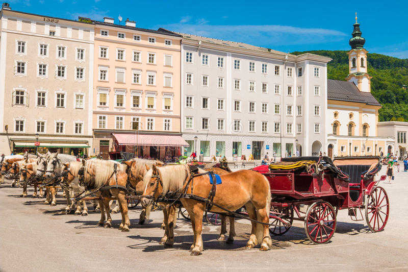 Beautiful horses and carriages waiting for a ride on Residenzplatz, Salzburg, Austria royalty free stock photo