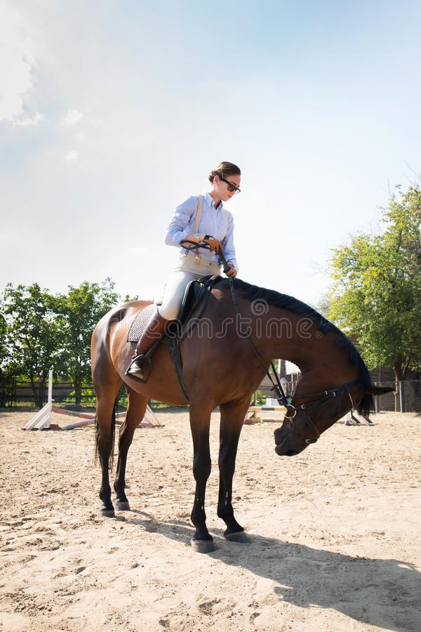 Beautiful horsewoman, in full growth stock images