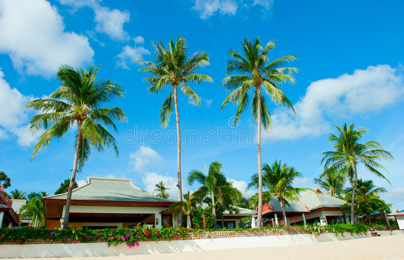 Beautiful House With Palm Trees On The Beach Royalty Free Stock Photo