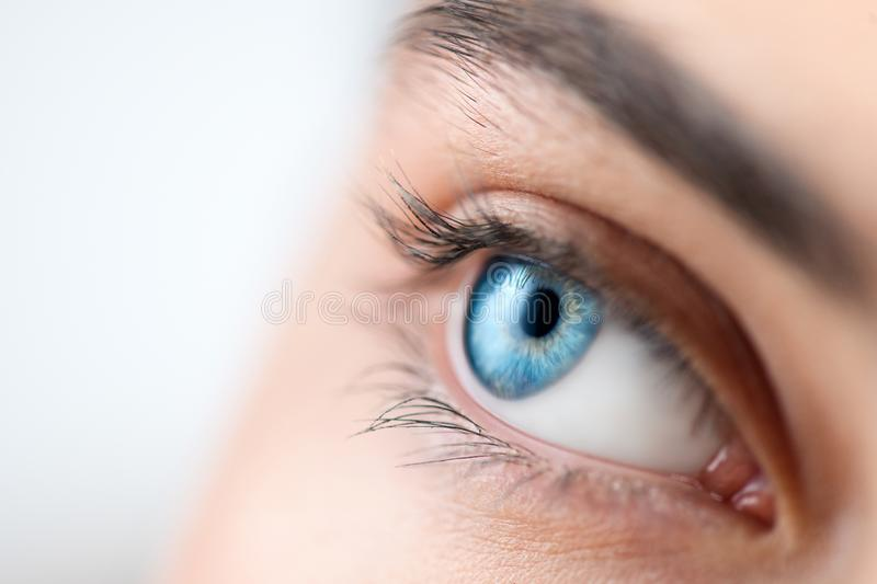 Beautiful human eye close-up. Young Woman Blue one eye macro shoot. Macro Closeup eye looking up, isolated on white stock images