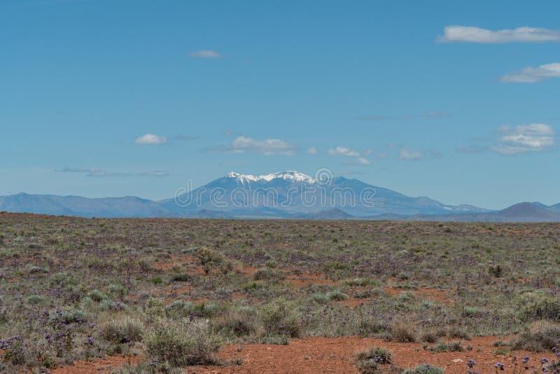 Beautiful Humphrey`s Peak vista in springtime, with the Arizona high desert in bloom. Beautiful Humphrey`s Peak vista in springtime, with the northern Arizona royalty free stock photo