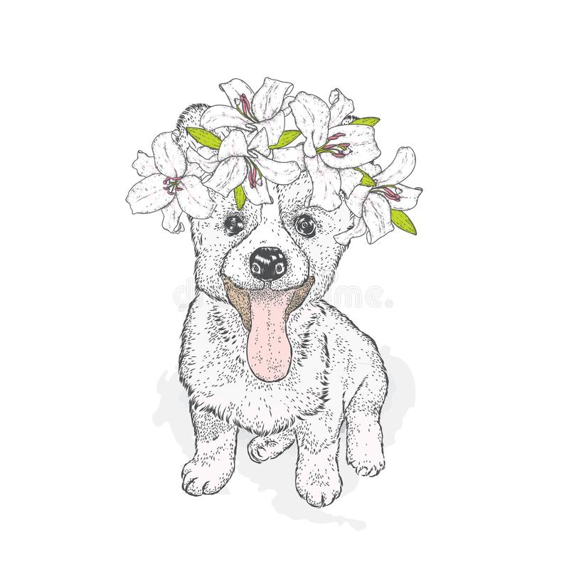 Beautiful Husky in a wreath of lilies. Lovely puppy in a flower wreath. Pedigree dog. Vector illustration.A cute puppy. stock illustration
