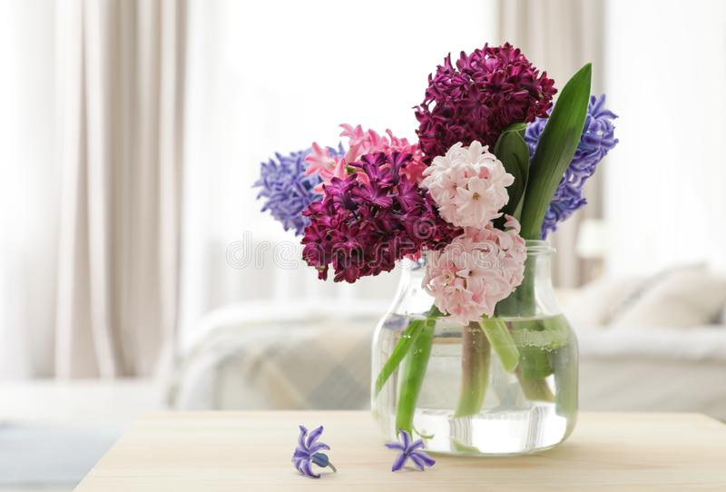 Beautiful hyacinths in glass vase on table indoors, space for text stock photos