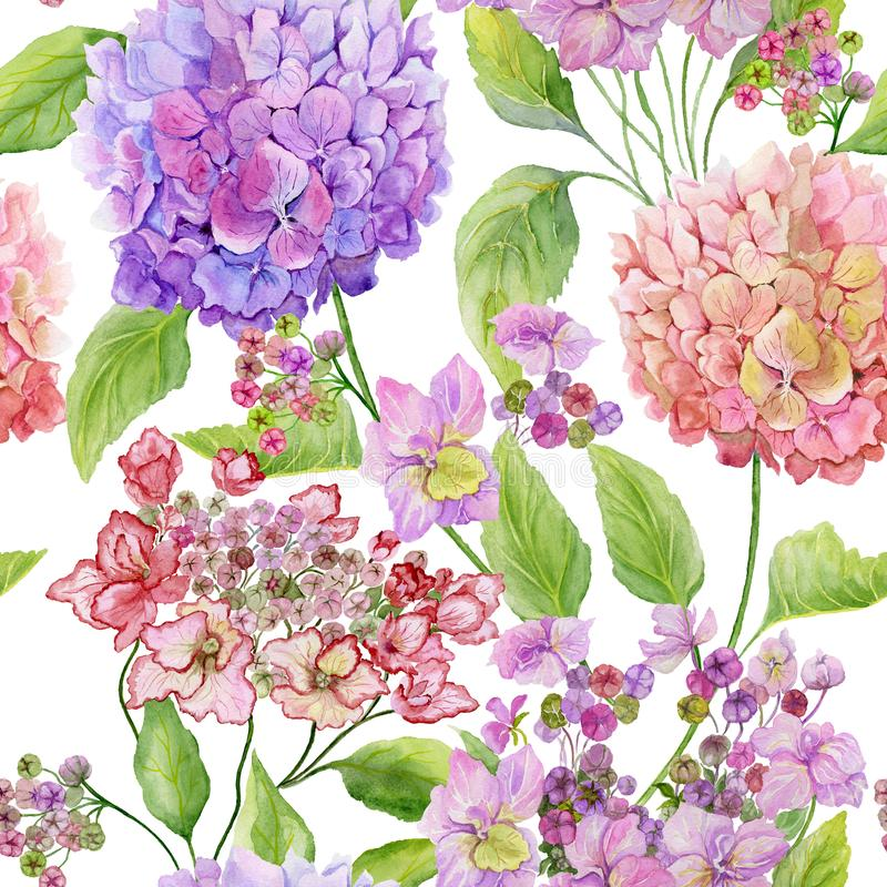Beautiful hydrangea flowers with green leaves against white background. Seamless floral pattern. Watercolor painting. vector illustration