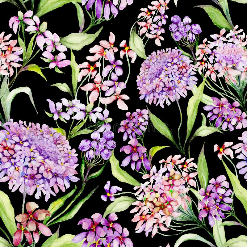 Beautiful iberis flowers with green leaves on black background. Seamless floral pattern. Watercolor painting. stock illustration