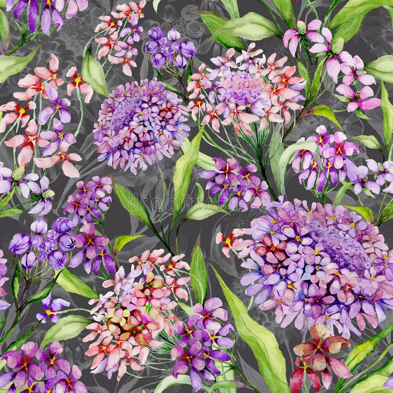 Beautiful iberis flowers with green leaves on gray background. Seamless floral pattern. Watercolor painting. stock illustration