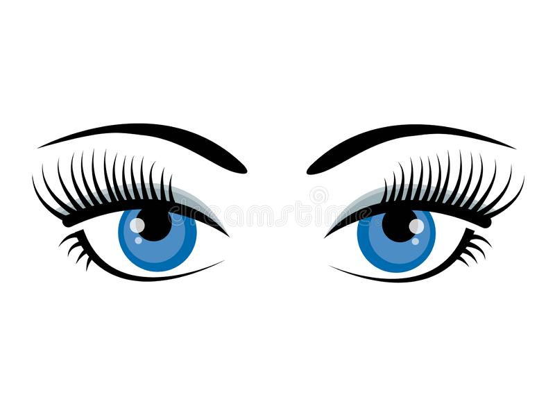 Beautiful ice blue female eyes with eyelashes, eyebrows and gray shadow isolated on white background. Flat style logo or. Icon design. Cartoon eyes. Vector royalty free illustration