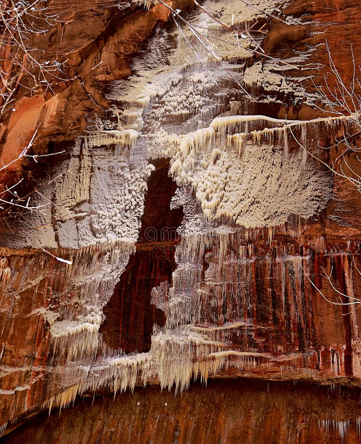 Beautiful ice formation on a sandstone and trees. In Zion National Park, Utah stock images