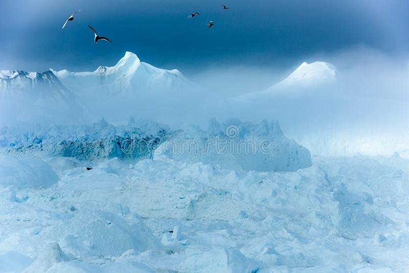 Icefjord Ilulissat coming out of fog, Disko Bay, Greenland, Birds over Icebergs. Beautiful icebergs coming out the fog in icefjord of Qeqertarsuup tunua stock photography