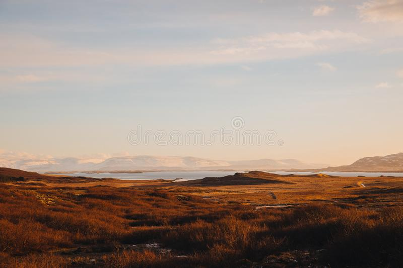 beautiful icelandic landscape with dry grass on coast and scenic mountains royalty free stock photos