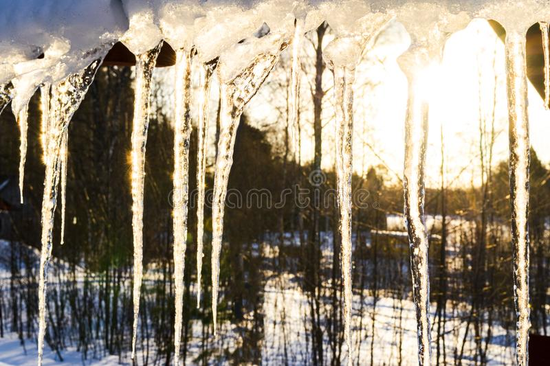 Beautiful icicles shine in sun against blue sky. spring landscape with ice icicles hanging from roof of house. Spring drops icicle stock image
