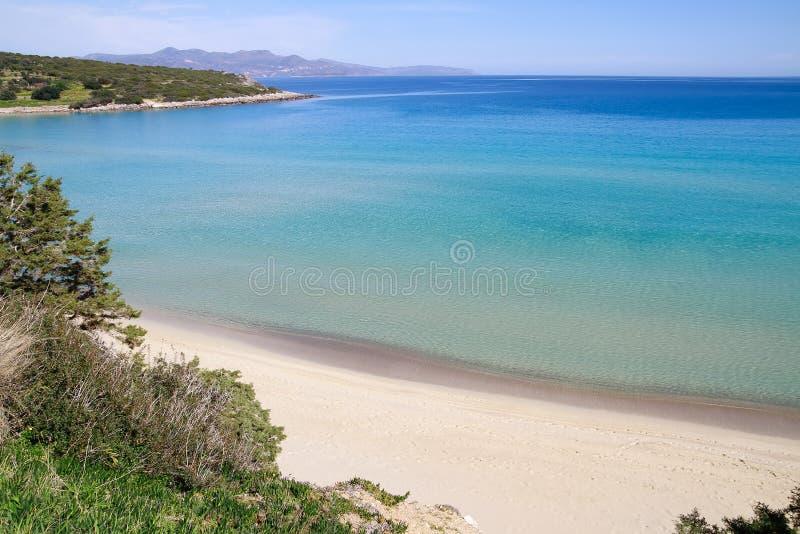 Download Beautiful Idyllic Turquoise Waters Shoreline Stock Image - Image: 36019511